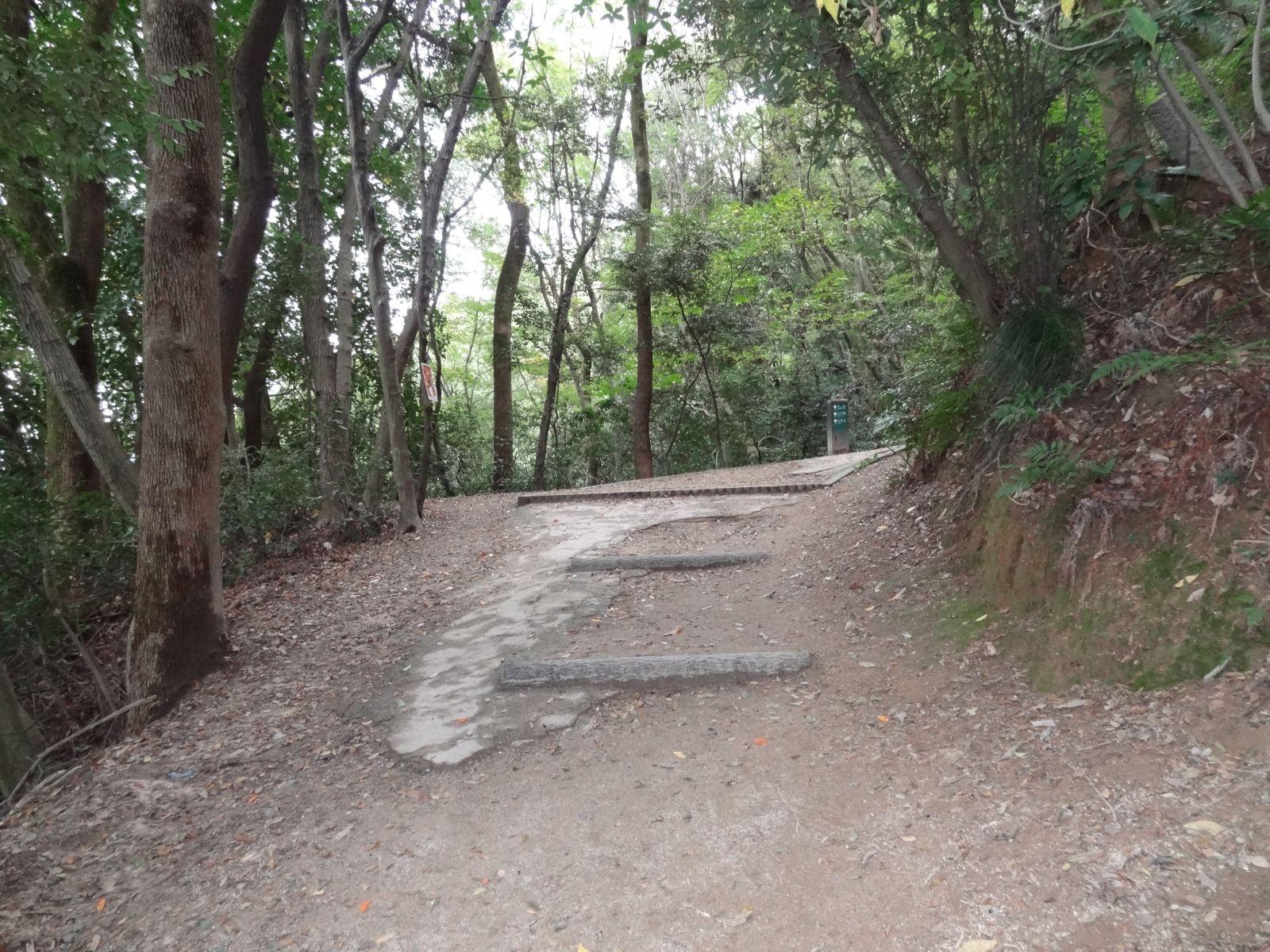 matsuyamajou20111107-1411