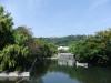 秋の松山城(東堀端より)の写真です。クリックすると拡大します。