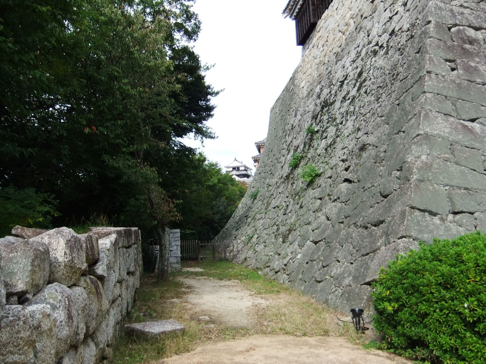 秋の松山城(長者が平から本丸までの間)の写真です。クリックすると拡大します。