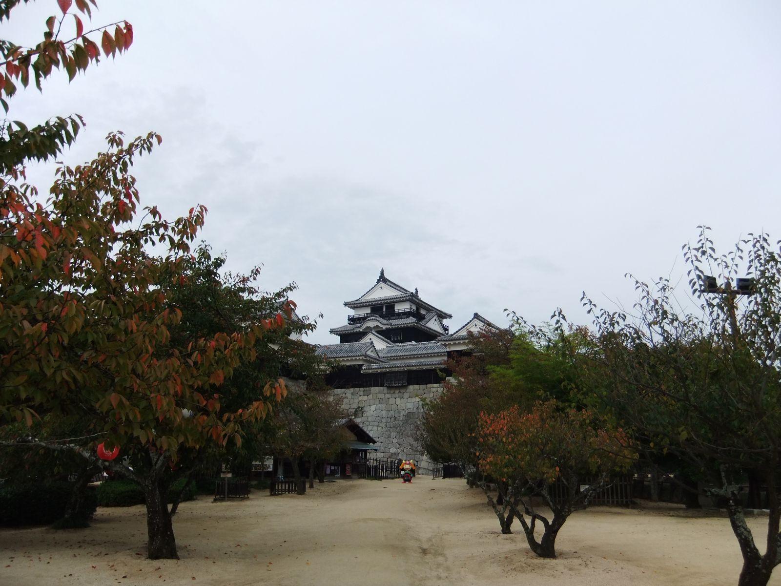 matsuyamajou20111102-2383