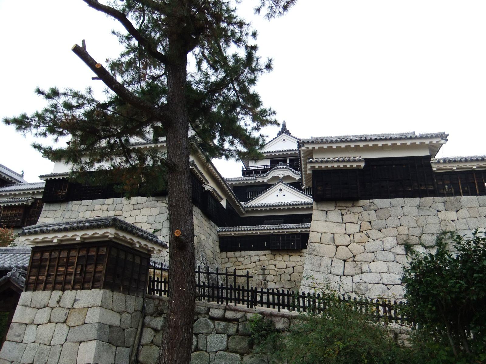 matsuyamajou20111102-2446