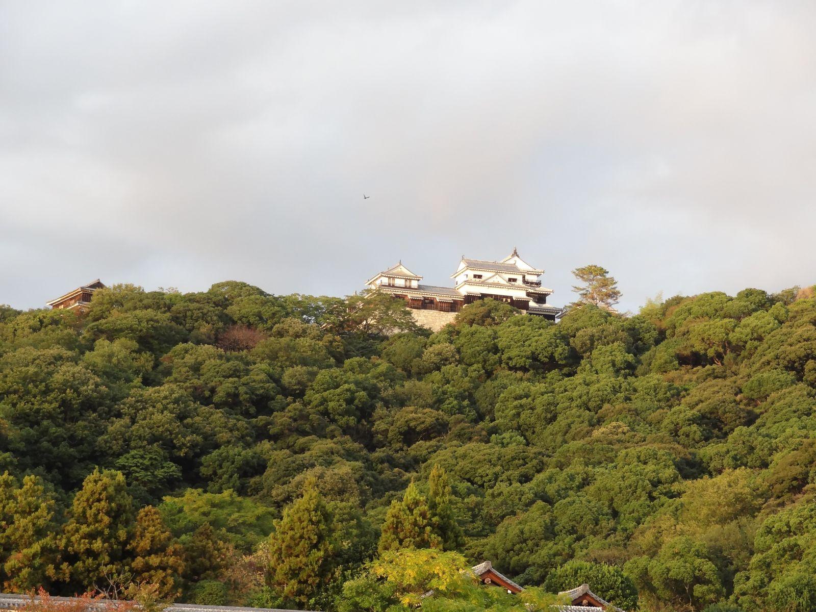 matsuyamajou20111107-1665