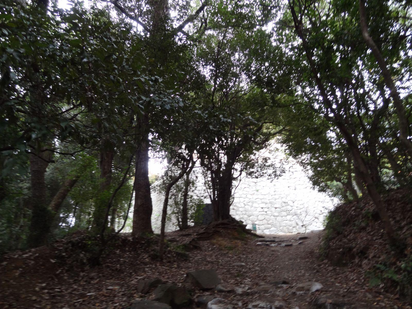 matsuyamajou20111107-1438