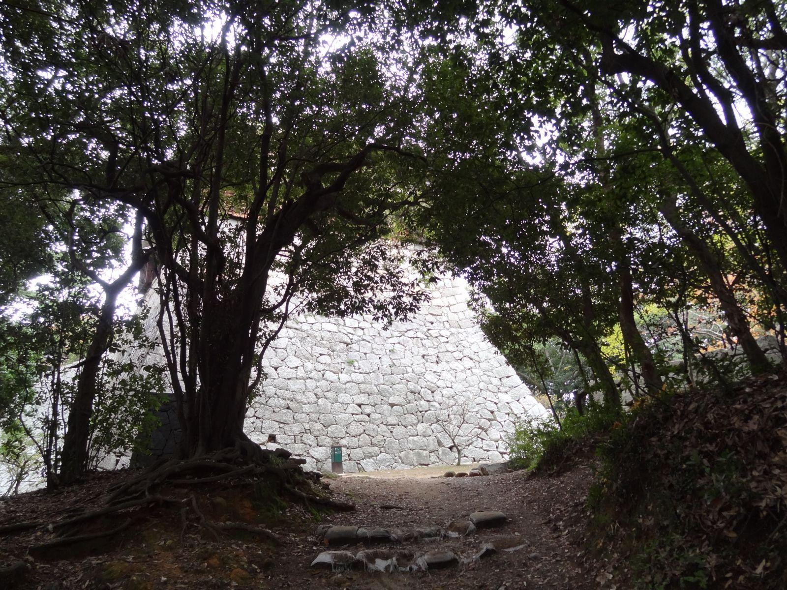 matsuyamajou20111107-1439