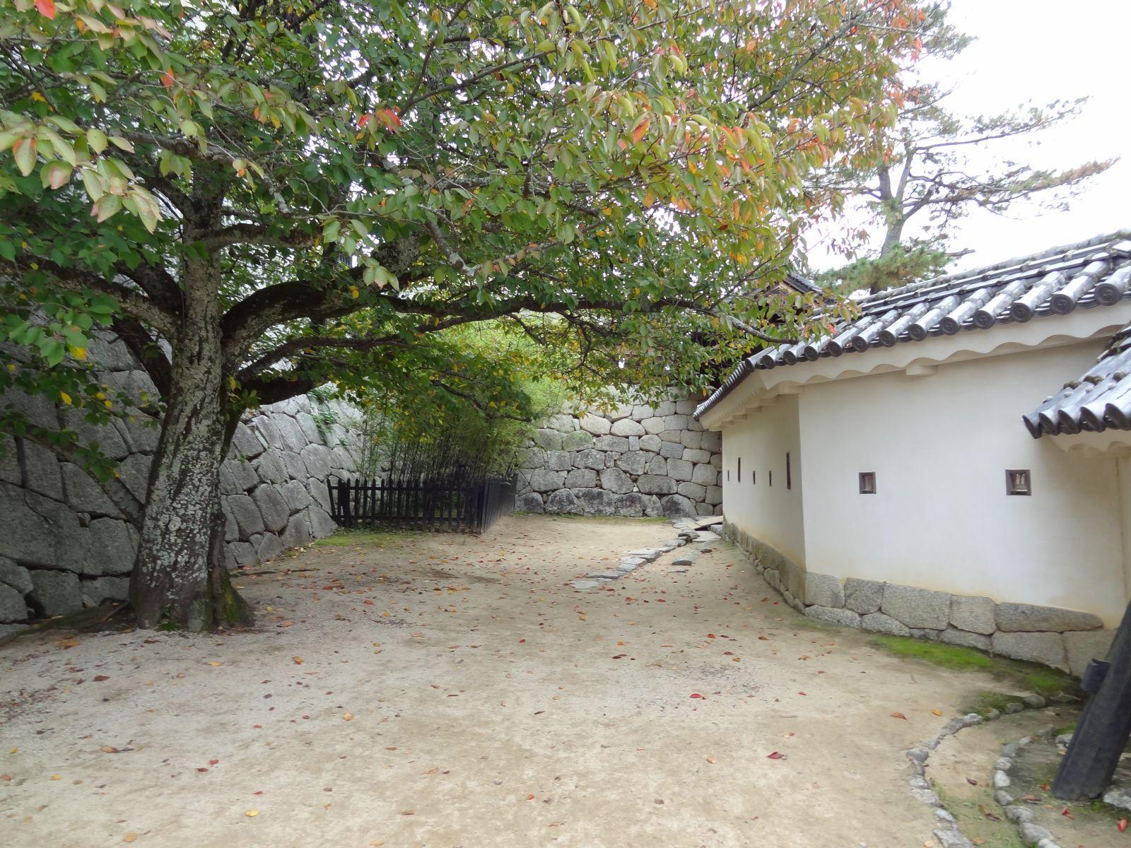 matsuyamajou20111107-1491