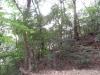 matsuyamajou20111107-1407