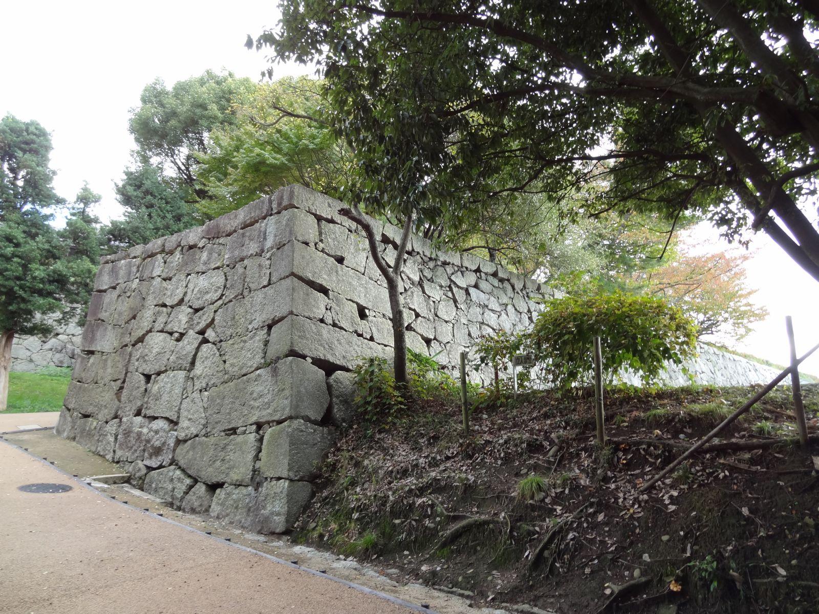 matsuyamajou20111107-0729
