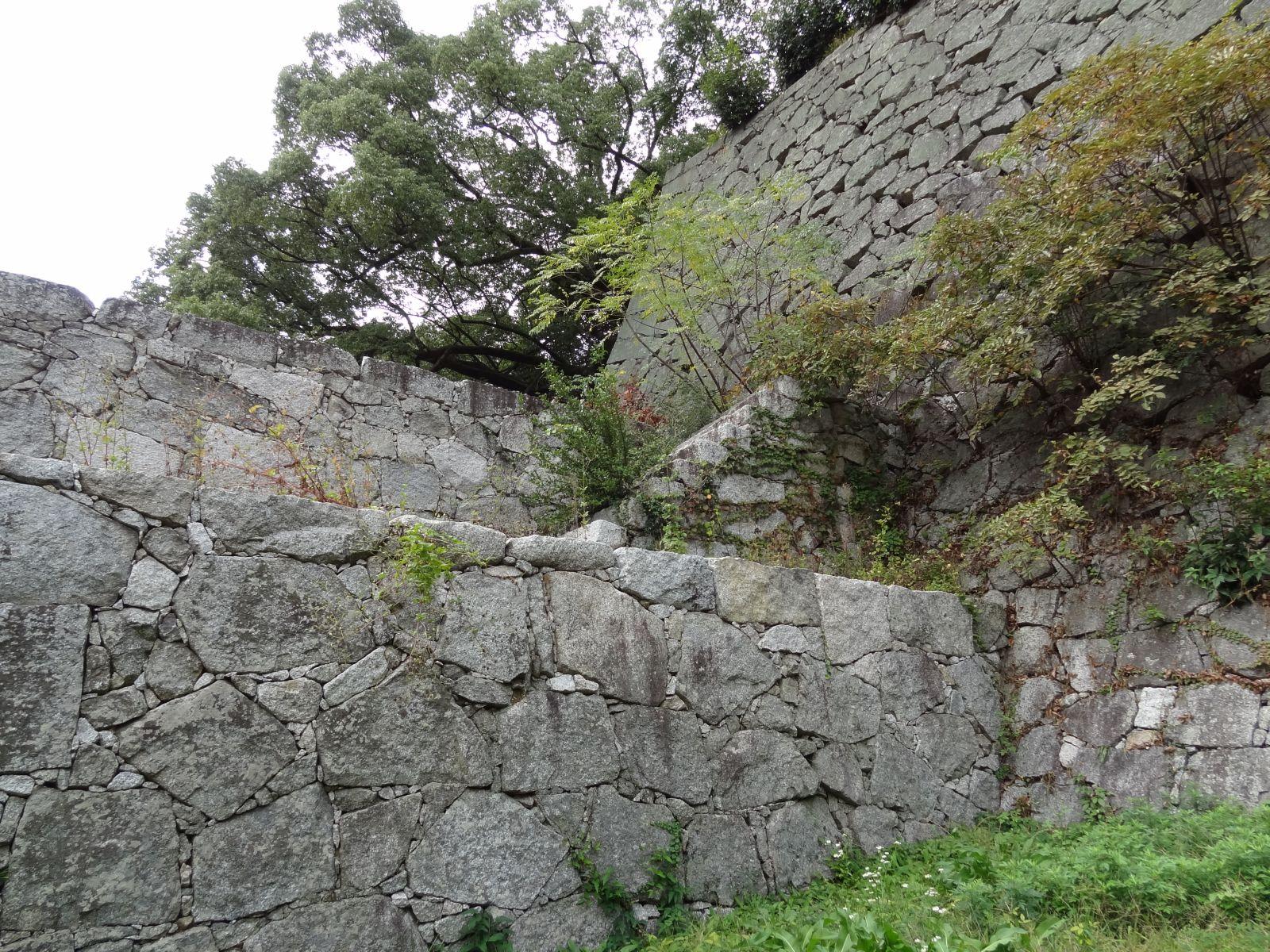 matsuyamajou20111107-1081