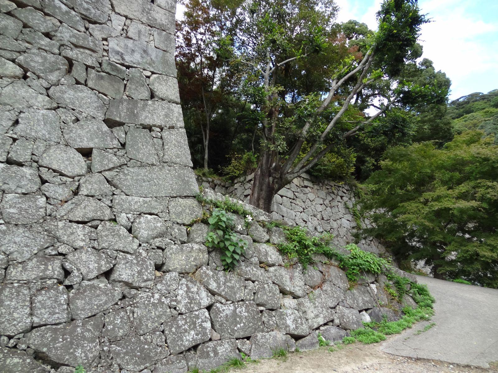 matsuyamajou20111107-1088