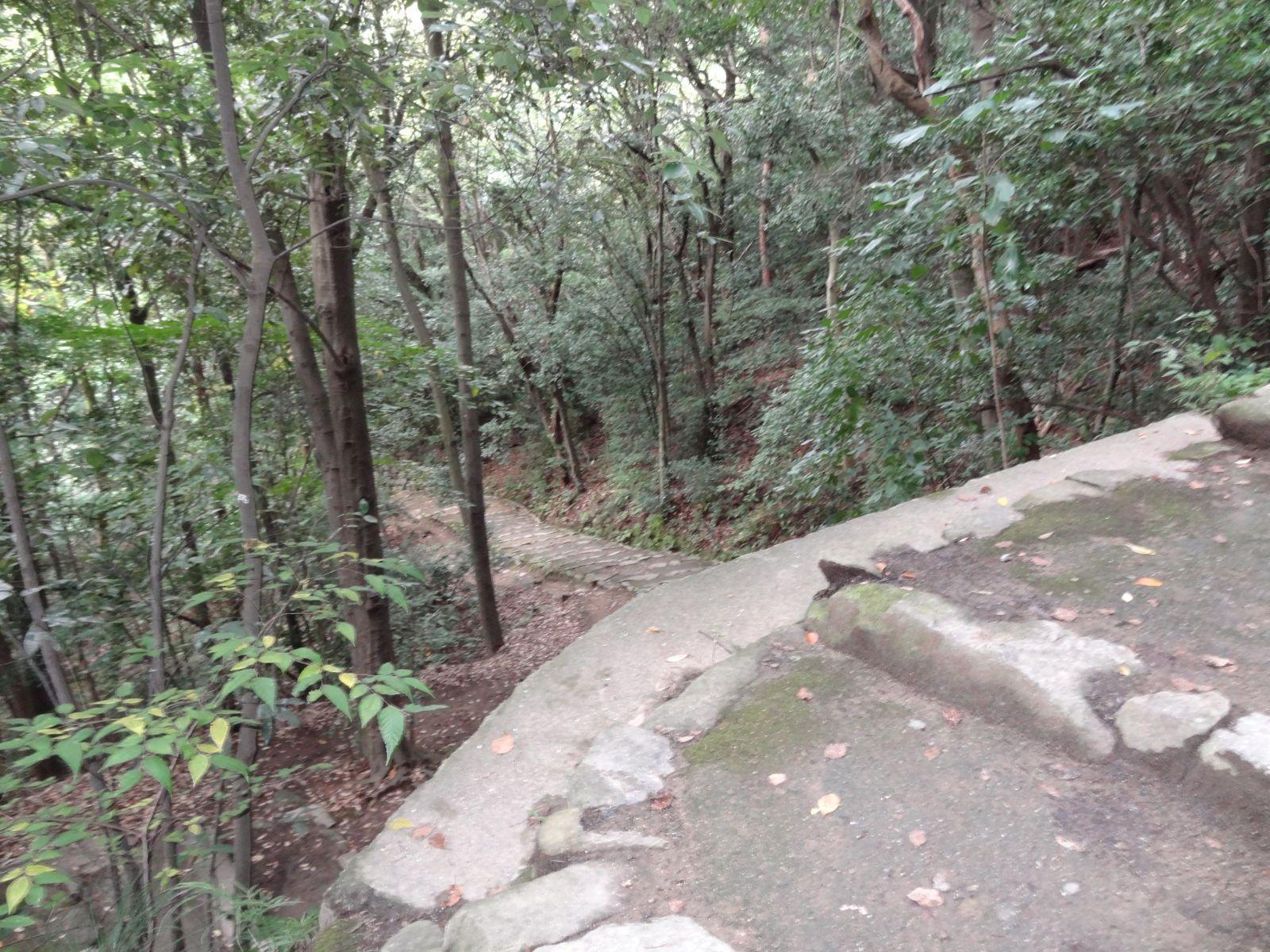 matsuyamajou20111107-1111