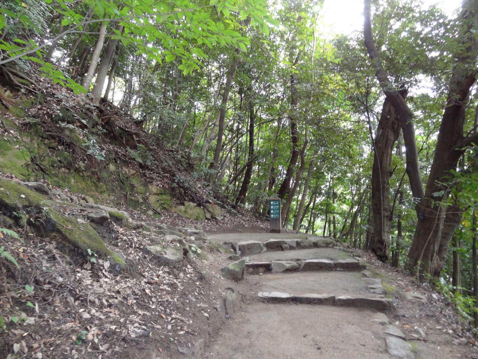 matsuyamajou20111107-1114