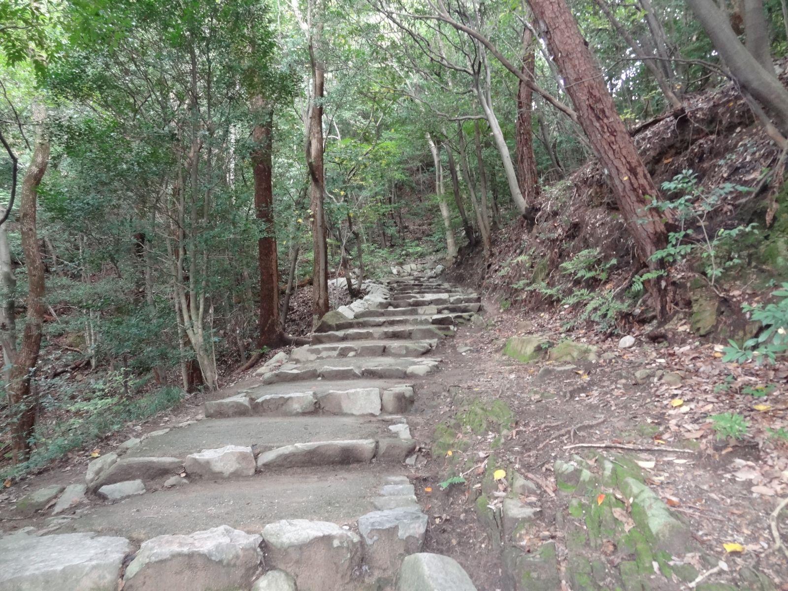 matsuyamajou20111107-1116