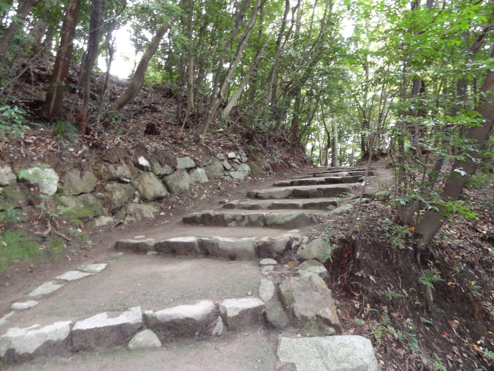 matsuyamajou20111107-1119