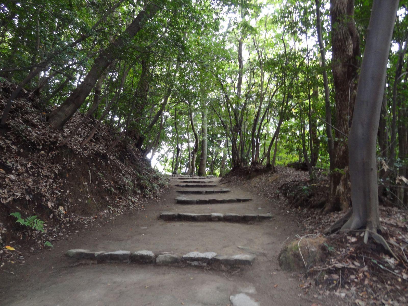 matsuyamajou20111107-1120
