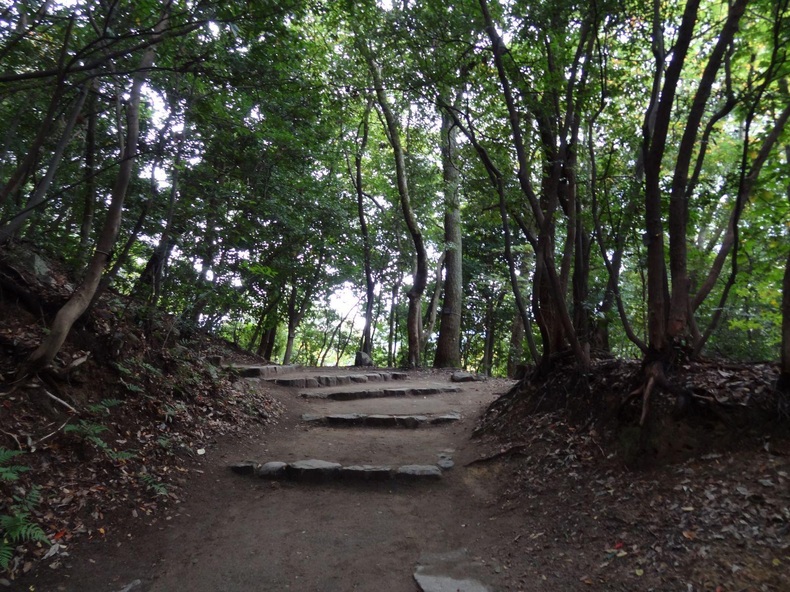 matsuyamajou20111107-1122
