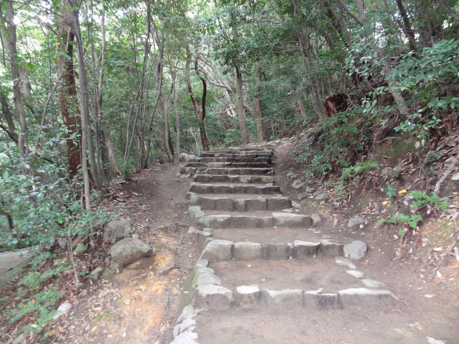 matsuyamajou20111107-1124