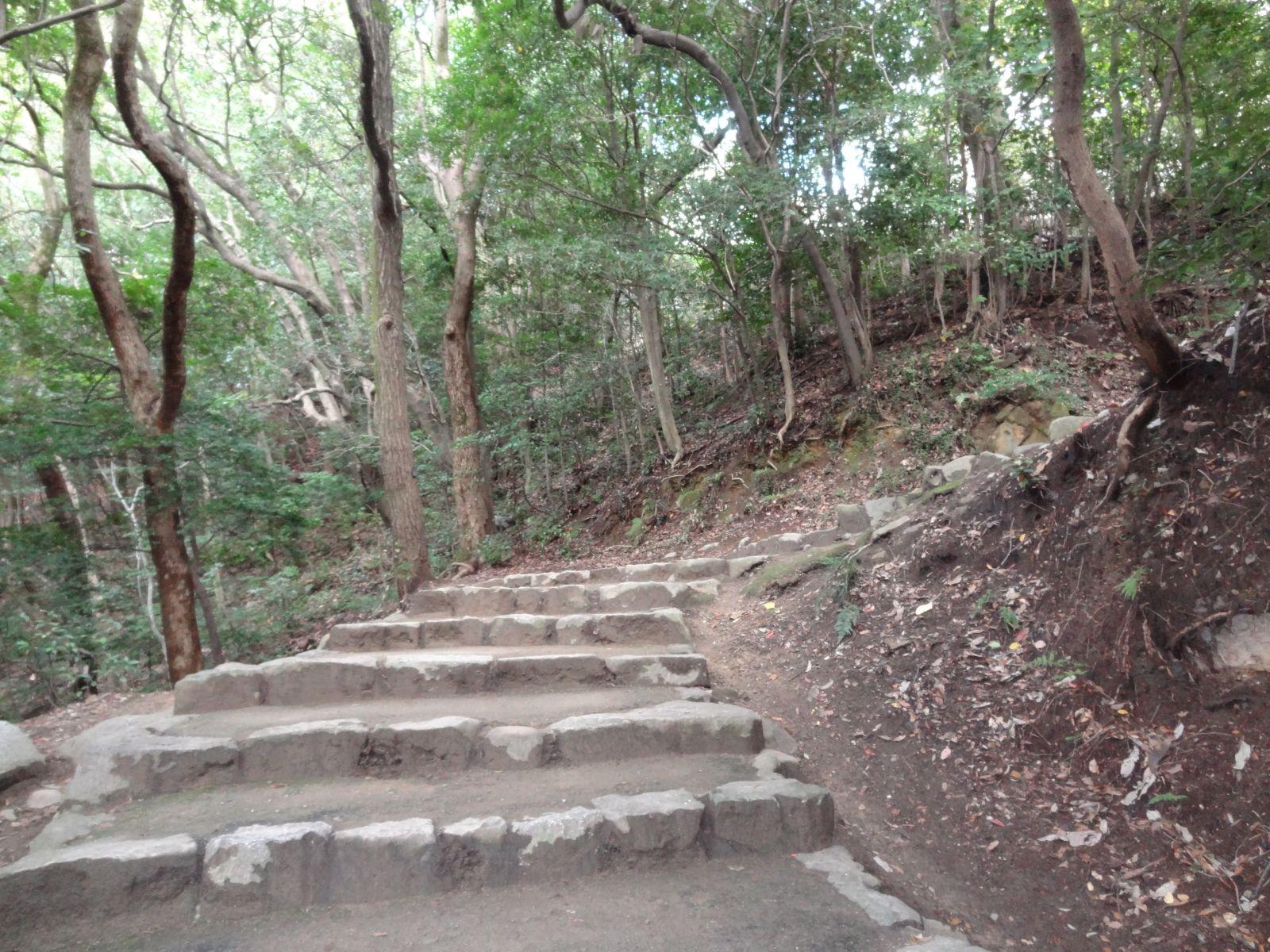 matsuyamajou20111107-1125