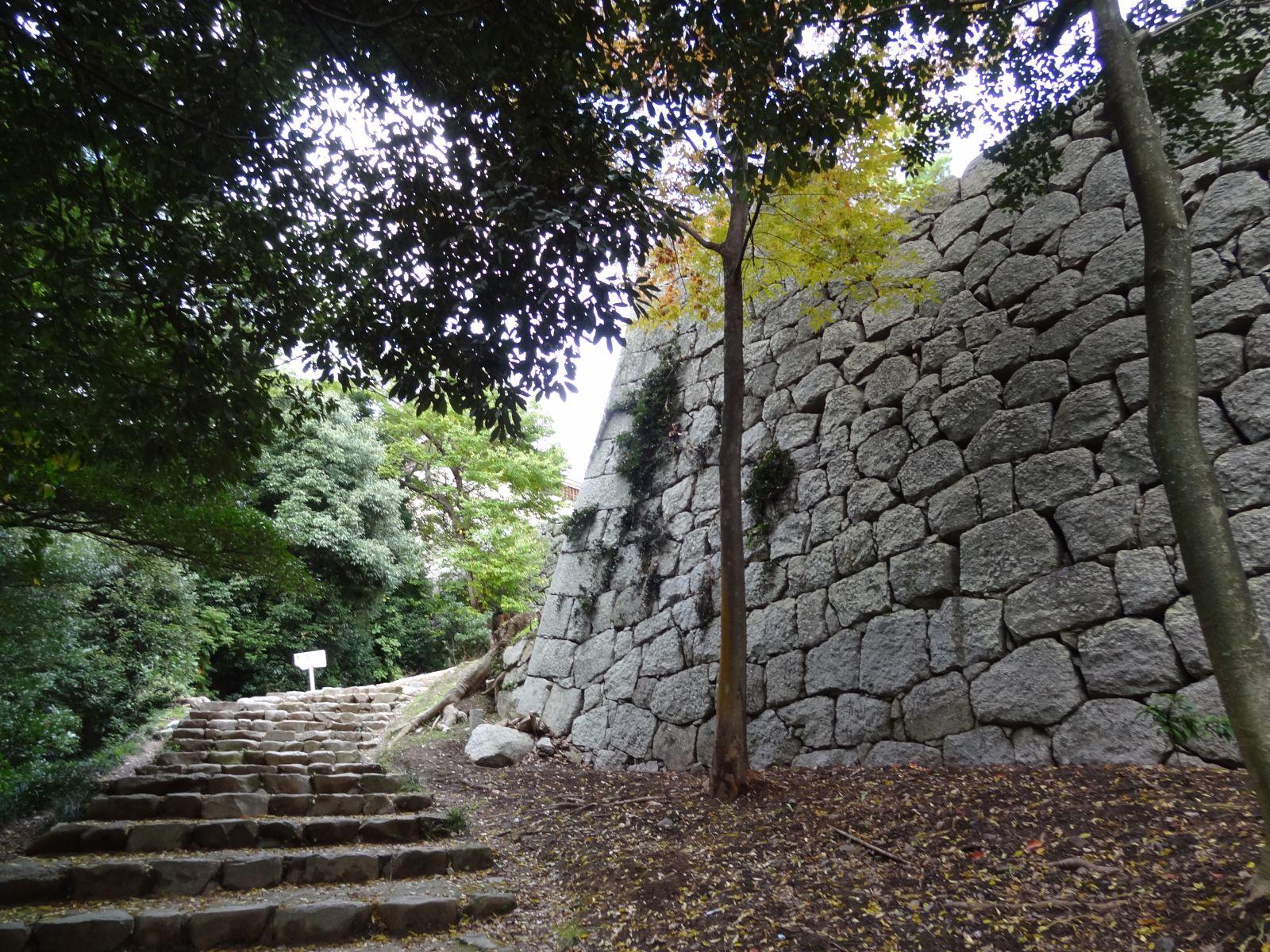 matsuyamajou20111107-1135