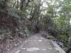 秋の松山城(黒門口登城道)の写真です。クリックすると拡大します。
