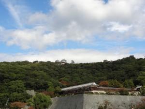 堀之内公園よりの松山城本丸と二ノ丸の写真です。クリックすると拡大します。