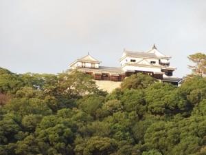 堀之内公園よりの松山城の写真です。クリックすると拡大します。
