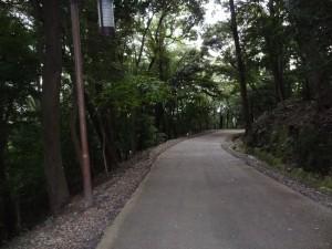 松山城、県庁裏登城道の写真です。クリックすると拡大します。